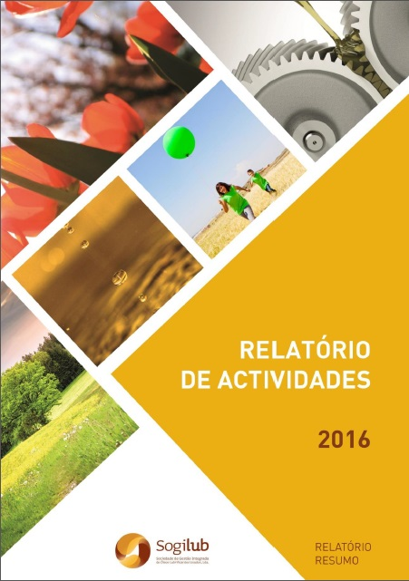 relatorio 2016