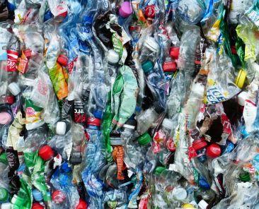 plastic-bottles-115071_1920